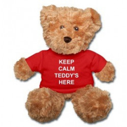 Keep Calm Teddy